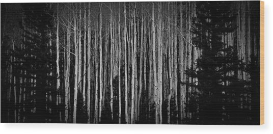 Abstract Aspens Wood Print