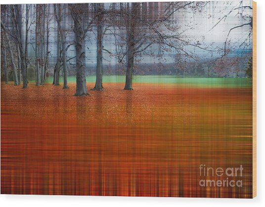 abstract atumn II Wood Print