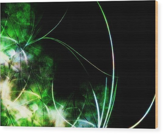 Abstract Wood Print by Cameron Rose