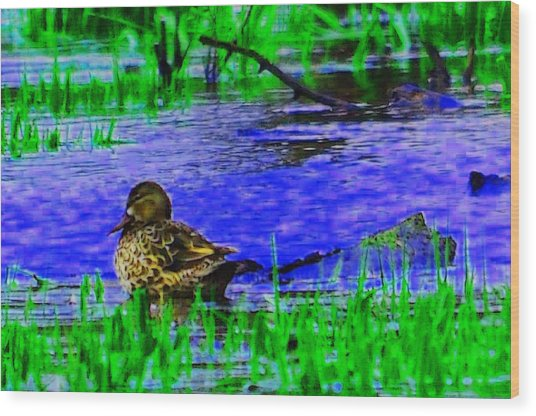 Abstract Duck Wood Print by Valarie Davis