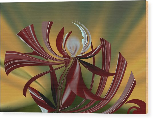 Abstract - Flower Wood Print
