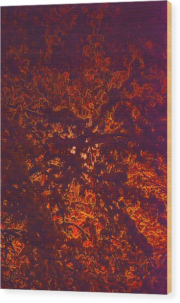 Abstract In Snow And Leaves Wood Print by Michael Fox