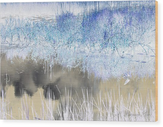 Abstract Marsh  Wood Print