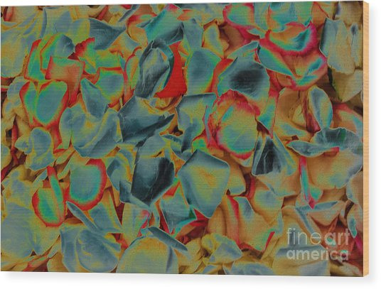 Wood Print featuring the photograph Abstract Rose Petals by Mae Wertz
