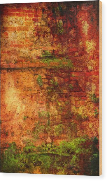 Abstract Vines On Wall - Radi Italy Wood Print