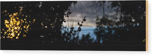 Abstract Window View Wood Print
