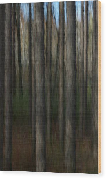 Abstract Woods Wood Print