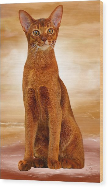 Abyssinian Cat Sorrel Color Wood Print