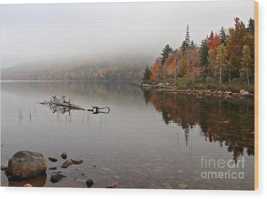 Acadia In The Fog Wood Print