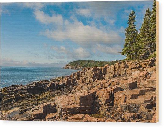 Acadia Shoreline Wood Print