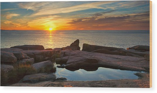 Acadia Sunrise Wood Print