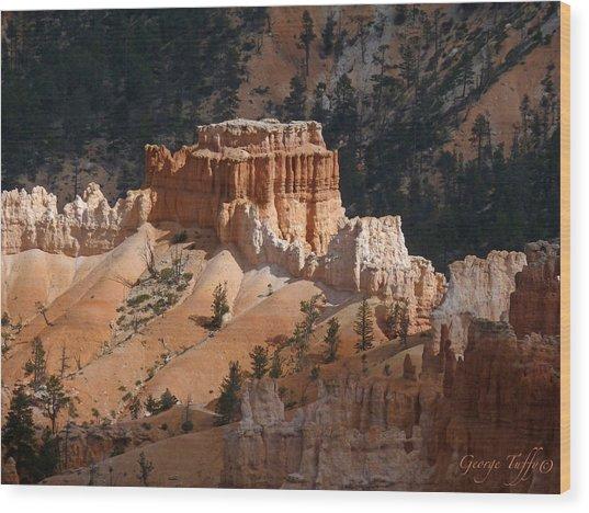 Acropolis Wood Print