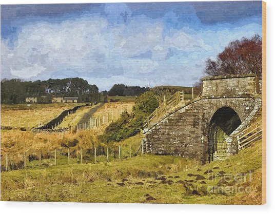 Across The Old Railway - Phot Art Wood Print