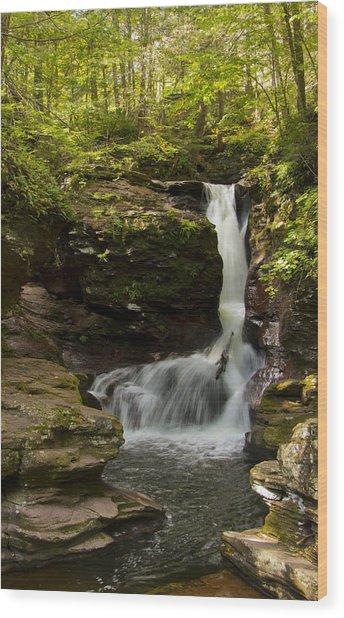 Adams Falls 0348 Wood Print