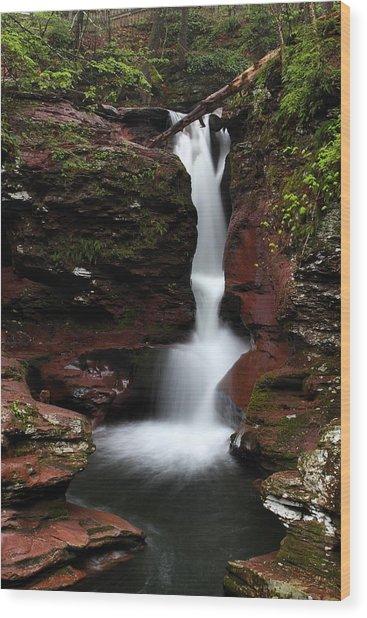 Adams Falls Wood Print