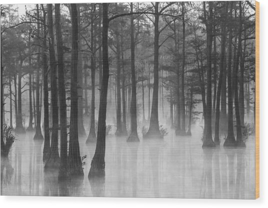 Adams Mill Pond 31 Wood Print