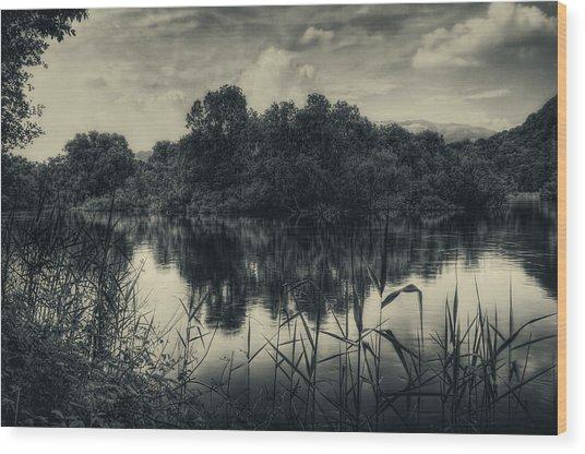 Adda River 3 Wood Print