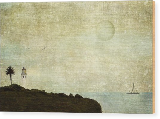 Adrift Wood Print