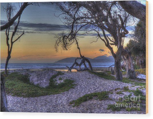 Adventures At Sunset Beach Wood Print