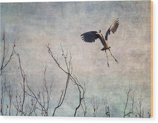 Aerial Dance Wood Print