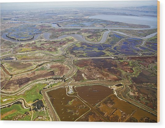 Aerial Of The California Delta Wood Print