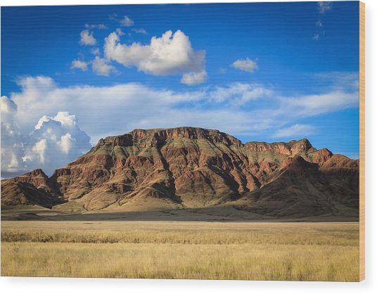 Aferican Grass And Mountain In Sossusvlei Wood Print