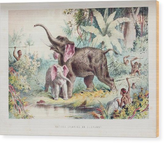 African Elephant Hunt Wood Print