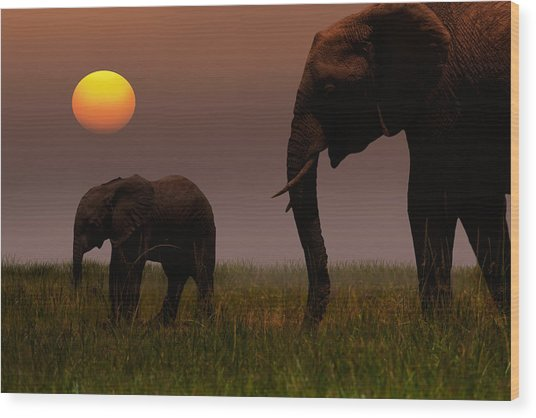 African Mother Elephant And Baby - Wood Print by 1001slide