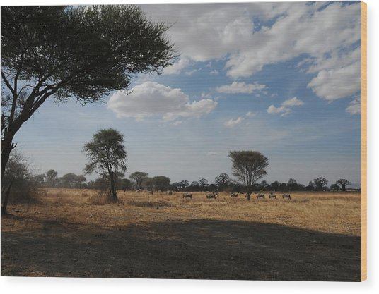 African Series Clouds Wood Print by Katherine Green