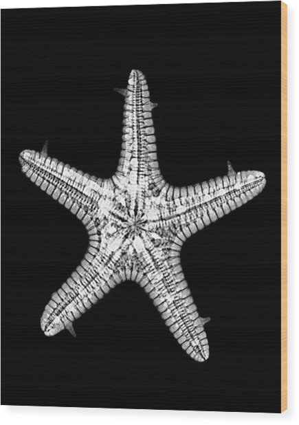 African Star Wood Print by William A Conklin