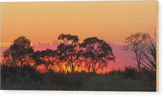 African Sunrise Wood Print by Karen E Phillips