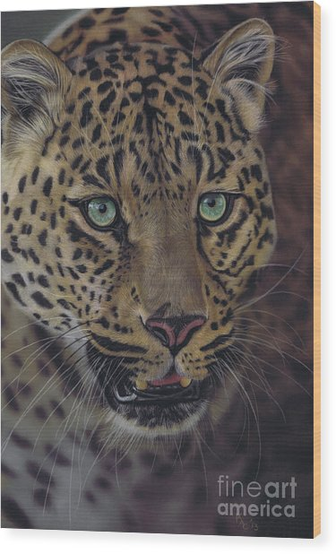 After Dark All Cats Are Leopards Wood Print