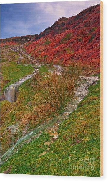 After The Rain - Moorland Streams Wood Print