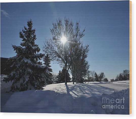 After The Snow 3 Wood Print by Graham Taylor
