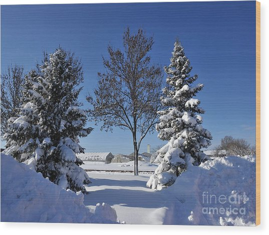 After The Snow Wood Print by Graham Taylor