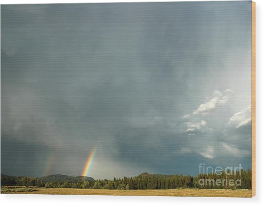After The  Storm Wood Print by Alan Russo