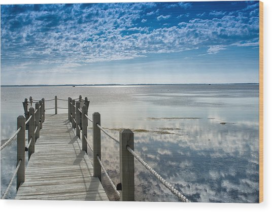 Afternoon At Currituck Sound Wood Print