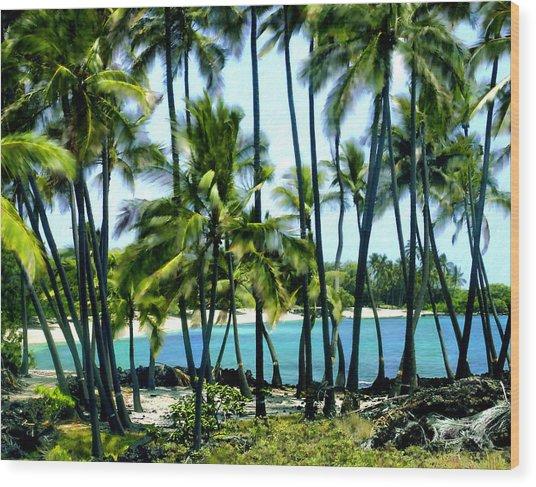 Afternoon At Kakaha Kai Wood Print
