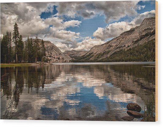 Afternoon At Tenaya Wood Print