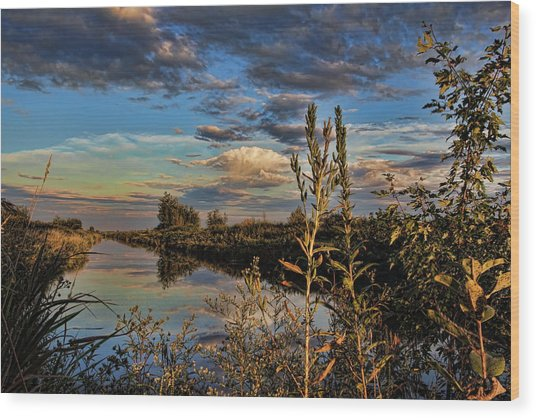 Late Afternoon In The Mead Wildlife Area Wood Print