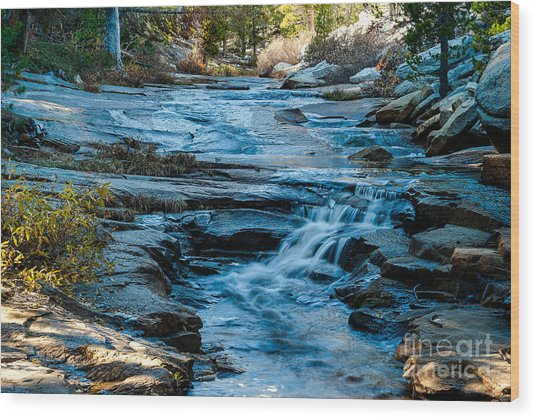 Afternoon Light On River. 1-7706  Wood Print by Stephen Parker