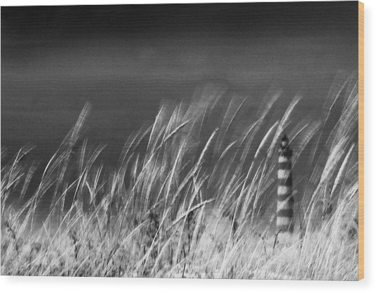 Against The Wind Wood Print