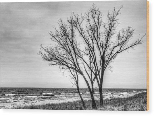Against The Wind Wood Print by William Reek