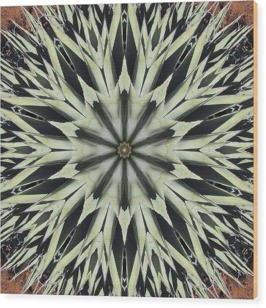 Agave Star Wood Print