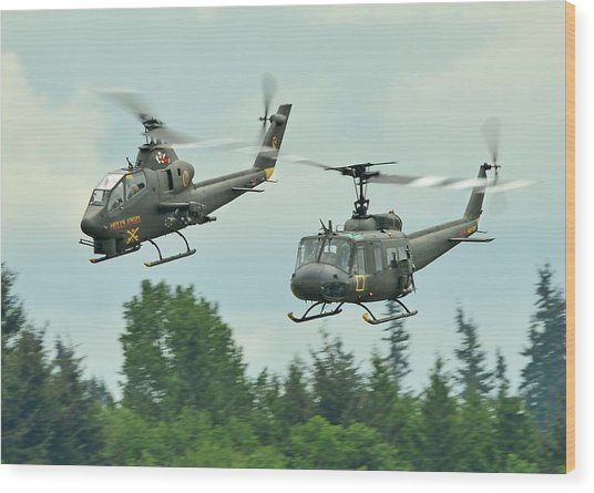 Air Cav Wood Print