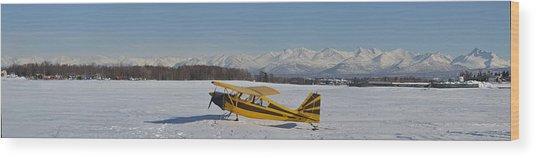 Airplane On Ice Wood Print