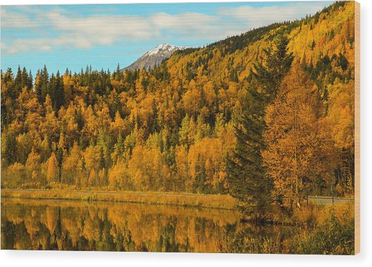 Ak Fall Wood Print