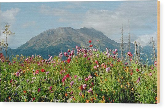 Alaska Flowers In September Wood Print