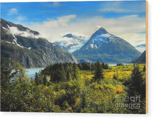 Alaska In All Her Glory Wood Print