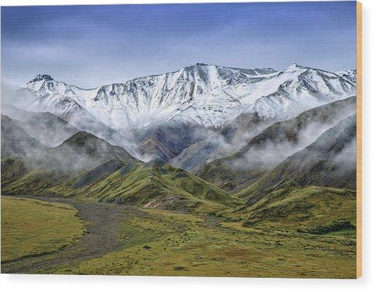 Alaskan Dream Wood Print